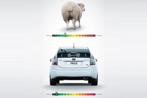 Le pet d'un mouton plus polluant qu'une Prius Toyota nous révèle un fait impensable