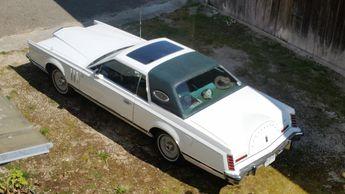 Voir détails -Lincoln Continental de collection à Castries (34)